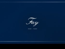 FAY: LISA EISNER MINISITE